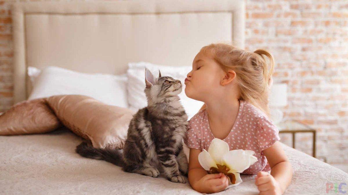Домашнее животное для ребенка: что нужно знать родителям