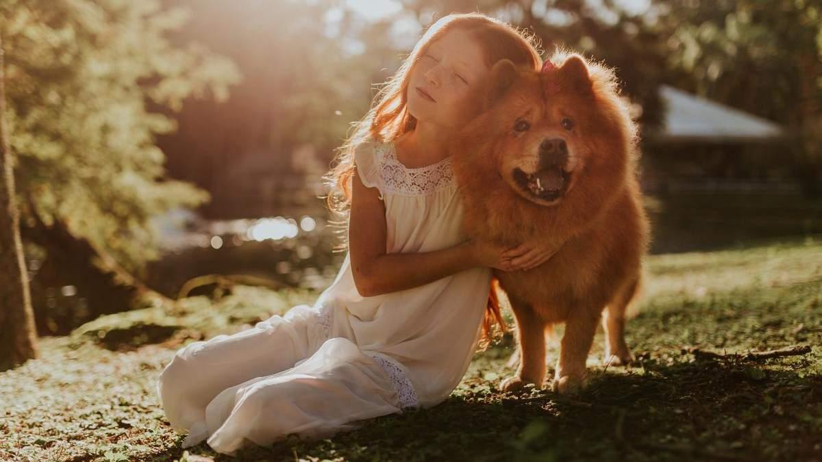 Чего может научить ребенка домашний любимец: 7 качеств