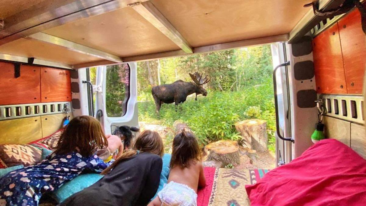 Семья с детьми живет в переоборудованном фургоне: фото, видео