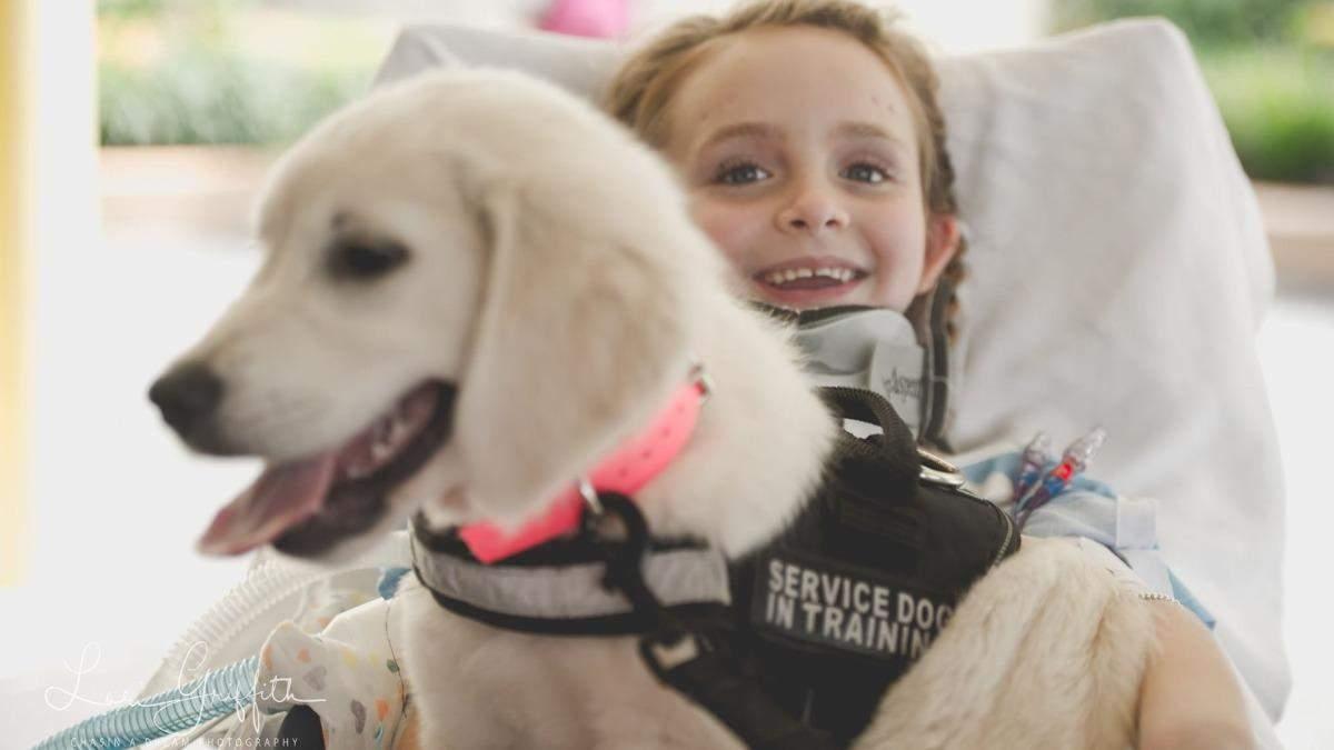 Мемфис Роуз парализовало после аварии: как ей помогает щенок