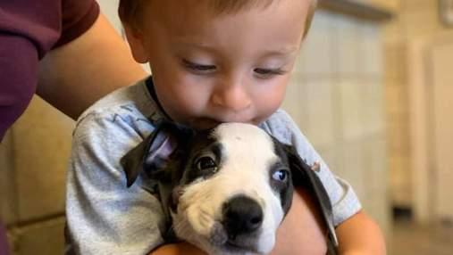 Хлопчику з патологією подарували собаку з таким же діагнозом: зворушливі фото першої зустрічі