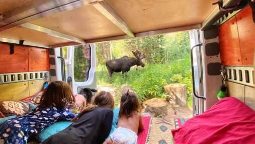 Сім'я з 3 дітьми живе та подорожує в переобладнаному фургоні: як їм це вдається – фото та відео