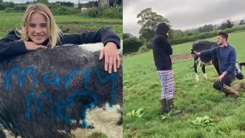 Оригінальна пропозиція вийти заміж від фермера: як чоловіку допомогли корови – фото, відео
